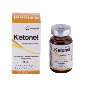 KETONEL KETOPROFENO 10% 10 ML